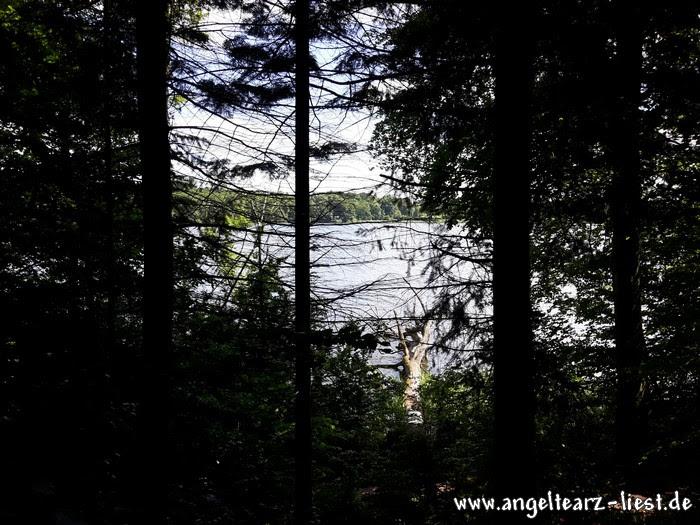 See und Wald in Grabau