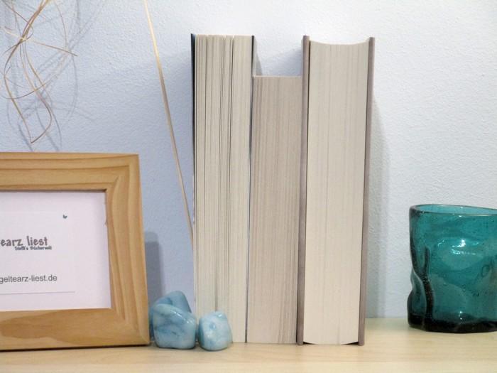 Buchbild mit leeren Schnitt