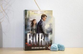 BURN – DER ANFANG VOM ENDE VON WALTER JURY UND SARAH FINE