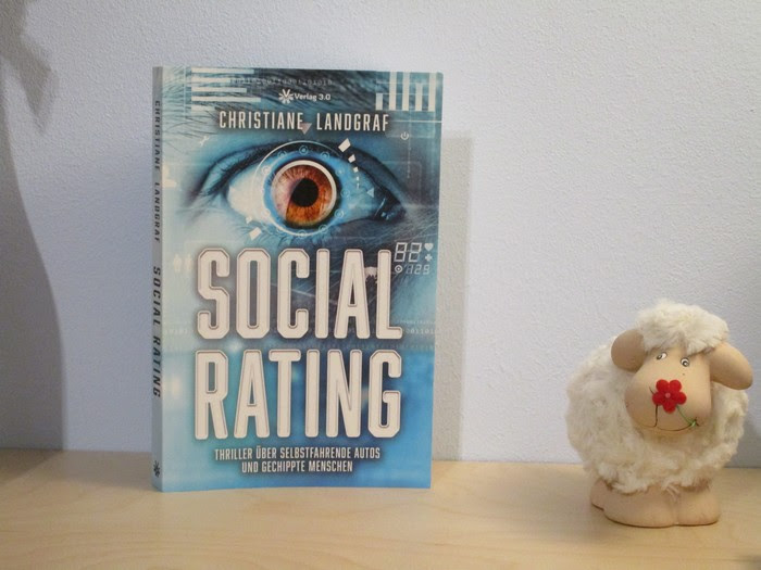 Rezension zu Social Rating von Christiane Landgraf