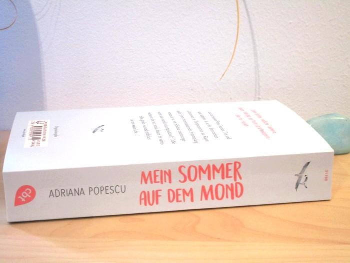 Mein Sommer auf dem Mond von Adriana Popescu