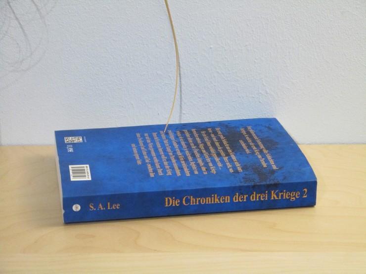 Die Chroniken der drei Kriege - Der Herr des Schwarzen Schwertes von S. A. Lee
