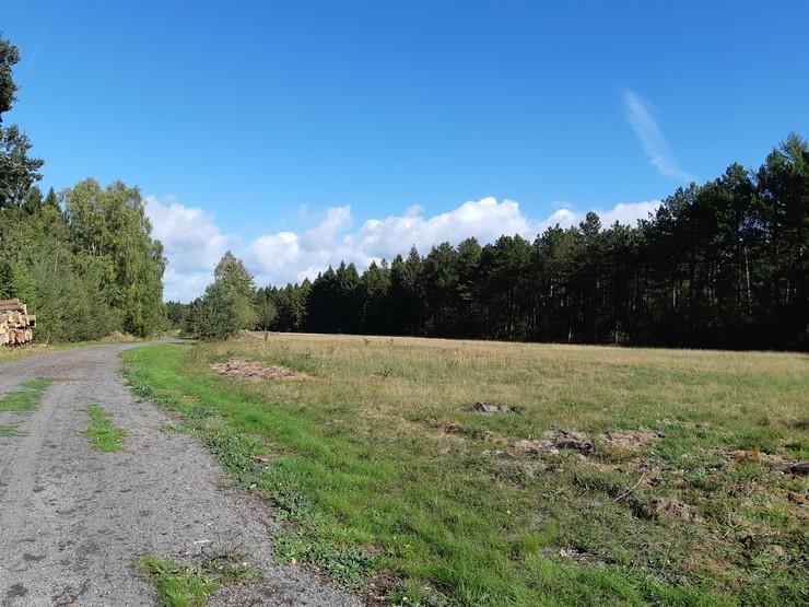 KZ Gedänkstätte in Kaltenkirchen