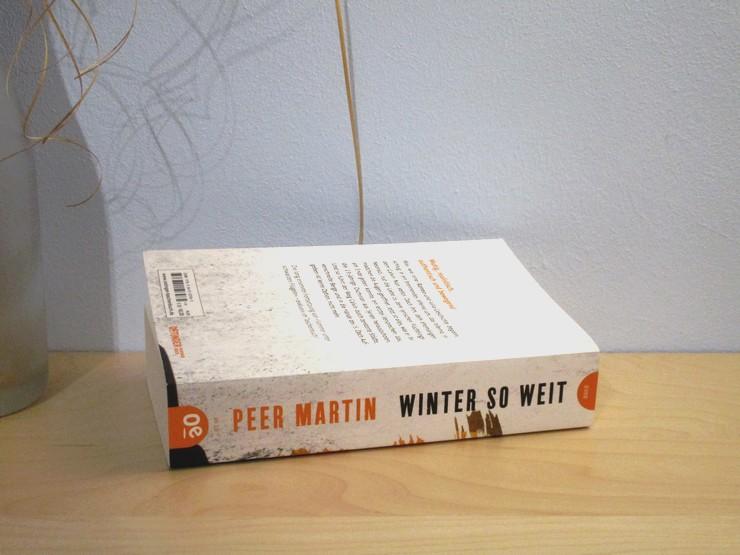 Winter so weit von Peer Martin