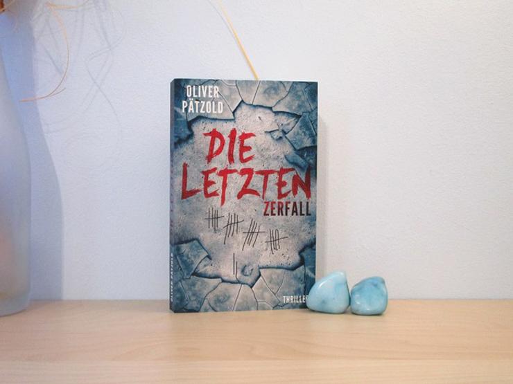Die Letzten - Zerfall von Oliver Pätzold