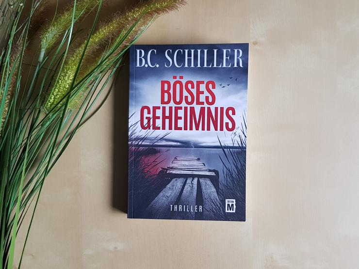 Böses Geheimnis von B.C. Schiller