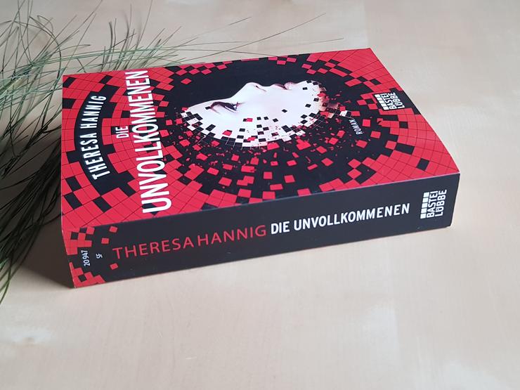 Rezension Die Unvollkommenen von Theresa Hannig