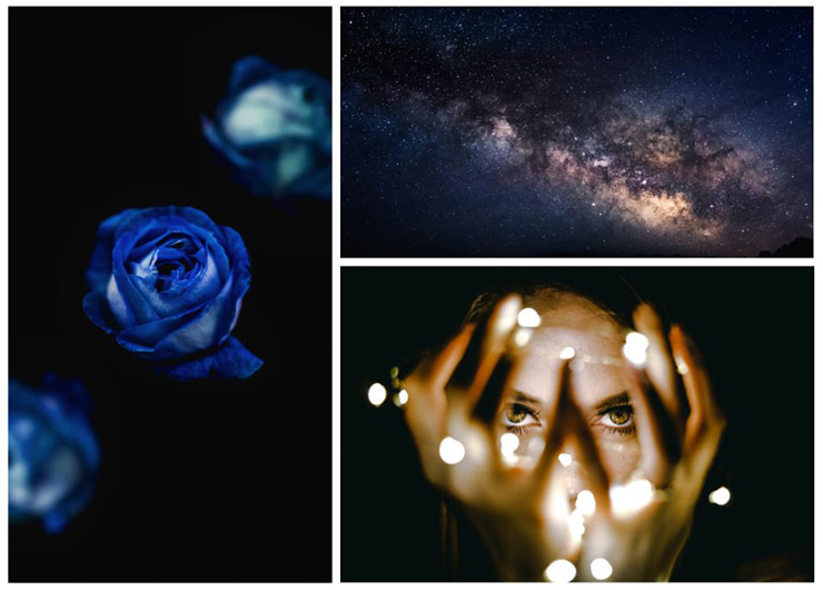 Collage Juliana Fabula