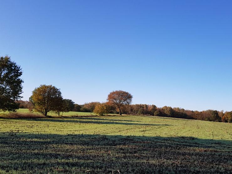 Landschaft Oktober
